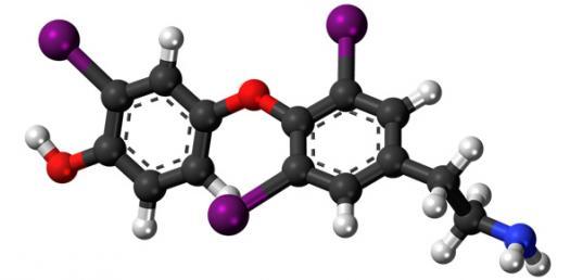 Quiz Over Atoms And Molecules