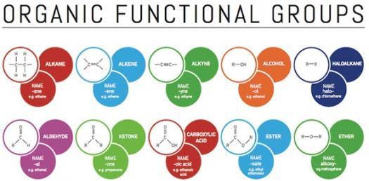 Organic Chemistry Common Functional Groups