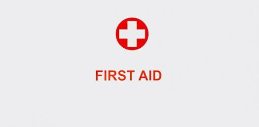 Camp Raanana Senior CIT Basic First Aid Quiz