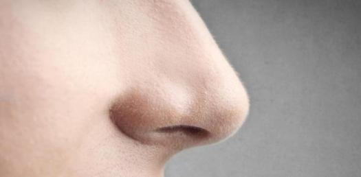 What Is The Shape Of Your Nose?