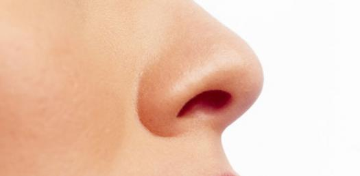 Reviewer: Nose And Tongue