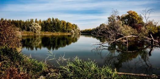 The River Amazon QUIZ ProProfs Quiz - River quiz