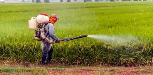 Pesticide Applicator License Quiz - ProProfs Quiz
