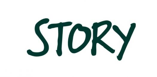 Story Synopsis Quiz