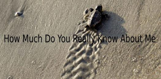 How Much Do You Really Know About Me?t