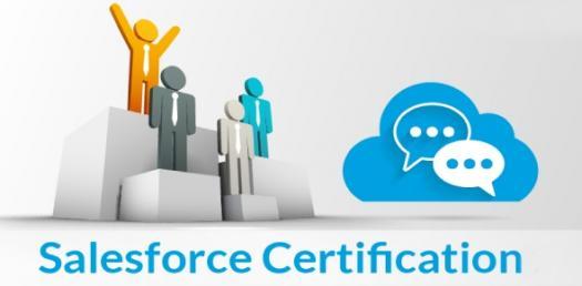 Salesforce Certification Dev 401 #1