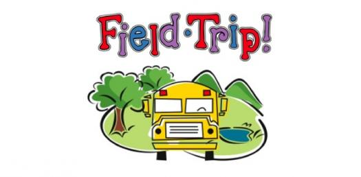 Lesson 11 Making The Most Of Community Resources And Field Trips