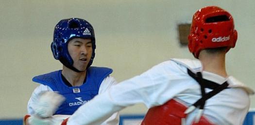 Taekwondo Forms 101