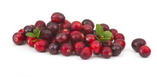 Cranberries Galore Quiz