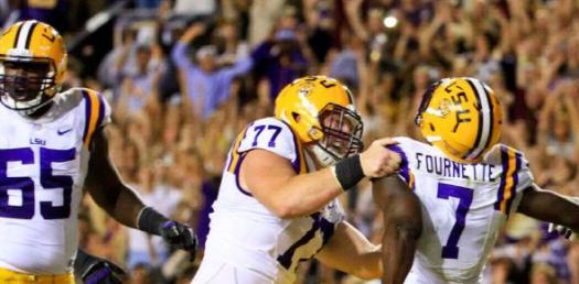 Are You A Fan Of LSU Tiger Team