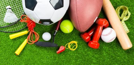 Sports Investor Profile