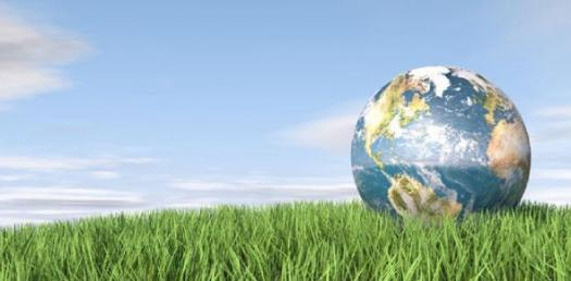 Ecosystems Trivia Quiz! Take This Quiz
