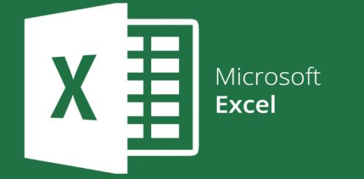 Microsoft Excel - Set 1