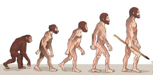 How Well Do You Know The Evolution Of Humans?