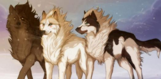 What Anime Wolf Are You? - ProProfs Quiz