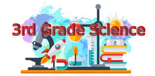 Science Quiz - Year 3