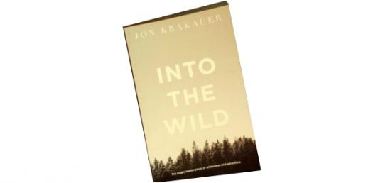 Into The Wild: Chapter 6-7 Quiz