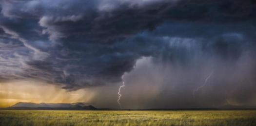 First Alert Monsoon Need-to-know Quiz