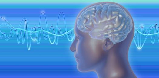 The Basic Neuroscience Trivia Quiz