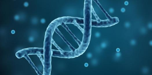 A Trivia Quiz On Genetic Disorder