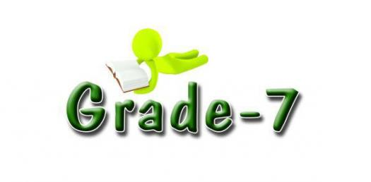 Chapter Two Quiz:Nouns Grade 7