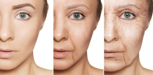 Understanding Of The Ageing Process