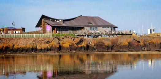 Scottish Seabird Centre Induction Quiz