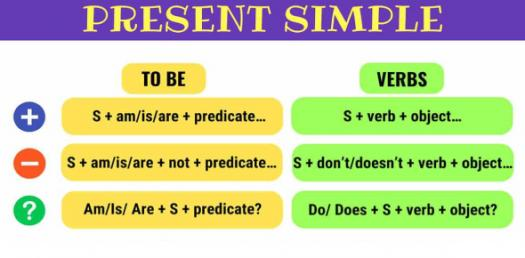 Present Simple Tense Test! Can You Pass It?