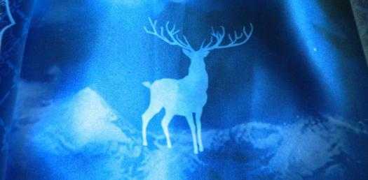 Harry Potter: What Animal Is Actually Your Patronus?