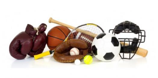 Sports 2013 Quiz 1