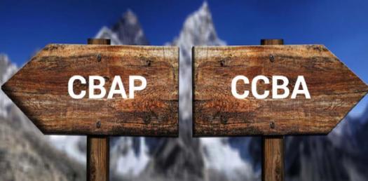 IIBA Babokv2 - CBAP And Ccba 150 Multiple Choice Quiz
