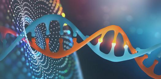 Genetic Algorithm Quiz