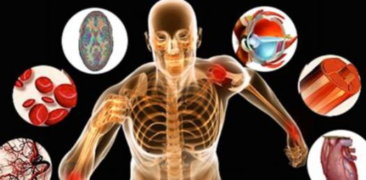 ITEC Anatomy And Physiology