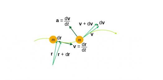Physics Quiz: Kinematics