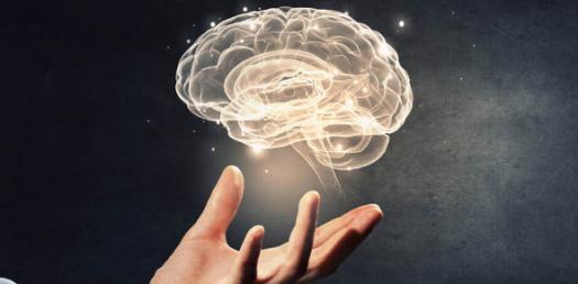 Semester 2 Neuro, Quiz 4 - Basal Ganglia