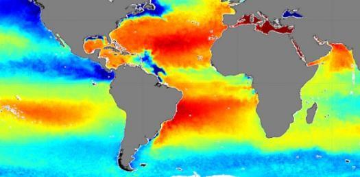 Ocean Salinity Quiz