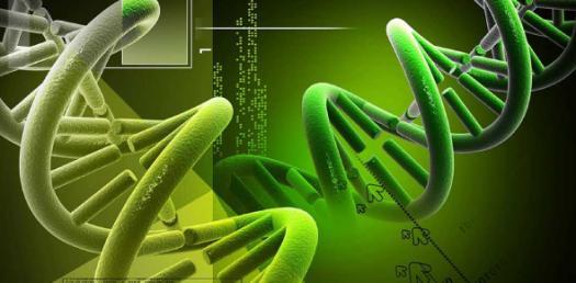 Biological Species Concept.