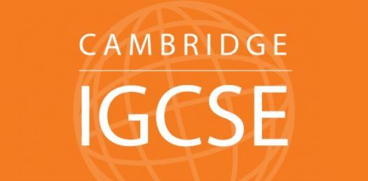 Practise For IGCSE ICT