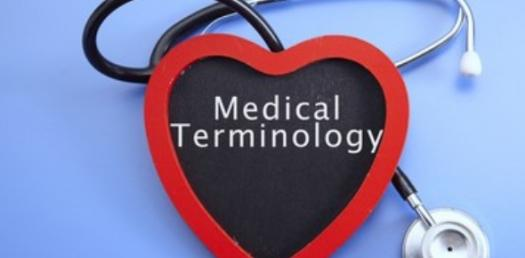 Medical Terminology Cardiovascular And Lymphatic System