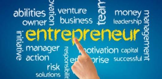 Quiz: Entrepreneurship And Business Ownership