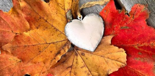 Which Season Is Your Season Of Love