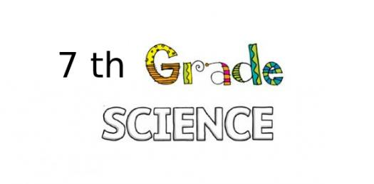 7th Grade Science Chapter 1 Quiz Questions