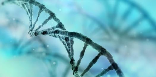 Biology Quiz On Health And Hygiene! Trivia
