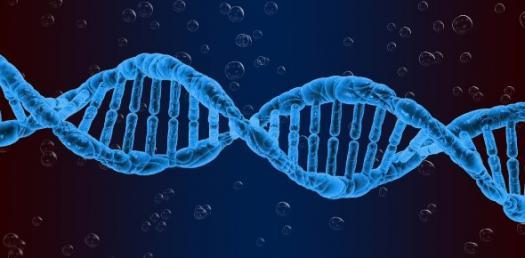 Quiz 2 - Leaving CERT Biology