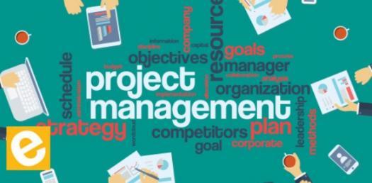 Quiz: IPSAS For Project Management