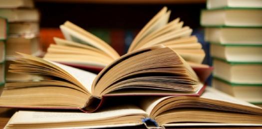 Literary Terms Quiz 3