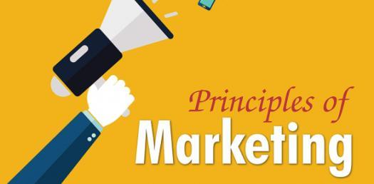 Principles Of Marketing: Factors Influencing Consumer Behavior! Ouiz
