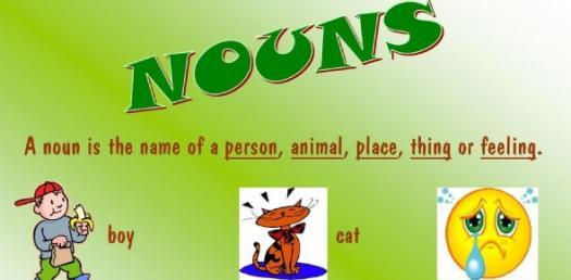 Could You Pass This Basic Noun Quiz?