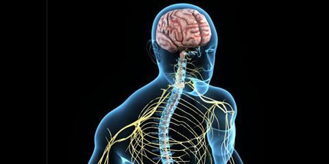 Anatomy And Physiology Exam Practice Quiz