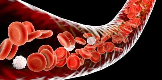 Hematology: Leukopoiesis, Blood Smear, And Cytochemistry
